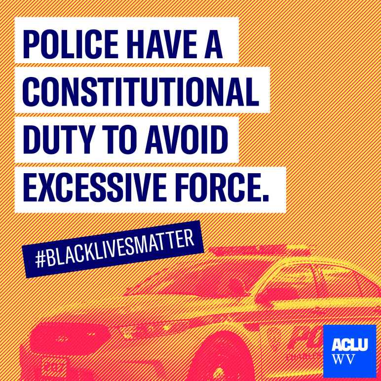 "A police vehicle is shown with the words ""Police Have A Constitutional Duty to Avoid Excessive Force"" and ""#BlackLivesMatter"""