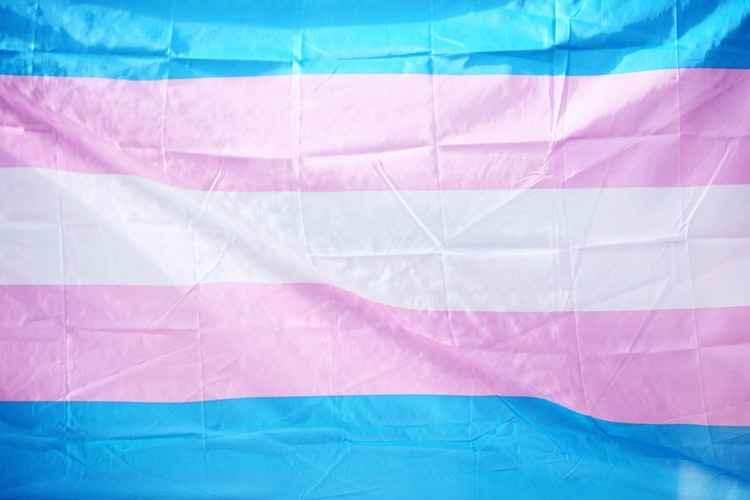 The transgender pride flag